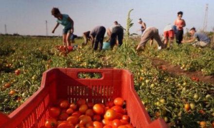 COVID 19: AGRICOLTURA, PERMESSI DI SOGGIORNO E VOUCHER