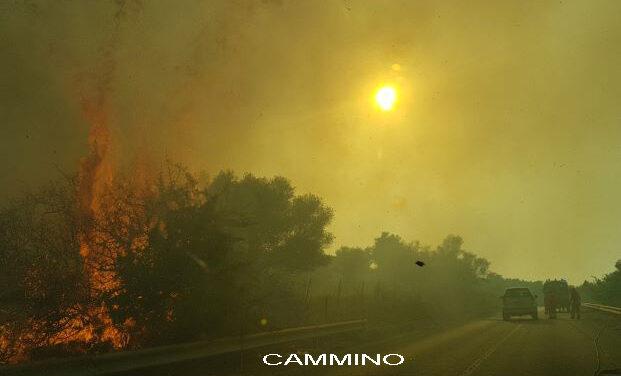 FOTONOTIZIA – La terra brucia, il buon senso pure ma non la protezione civile
